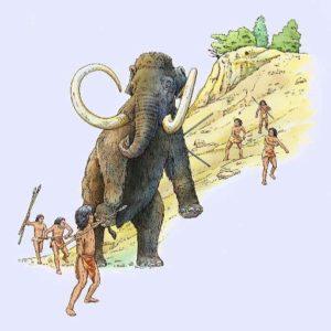 Clovis Mammoth