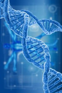 DNA By Stephen Robert Kuta DNA of my Ancestors