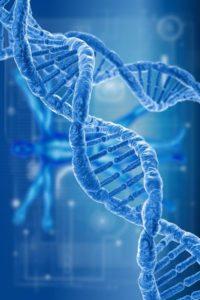 DNA By Stephen Robert Kuta DNA of my Ancestors